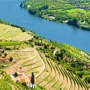 Douro Wines conquer the New York Times and Wine Spectator
